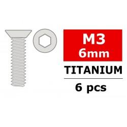 TITANIUM SCREWS M3X6 MM HEX FLAT HEAD (6)