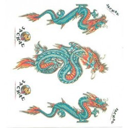 DECALS JUNIOR DRAGON